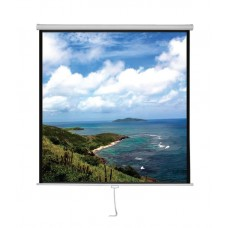"Xcellent Manual Screen 60""X60"""